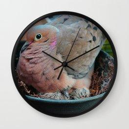 Baby Bird Peeking out at the World Wall Clock