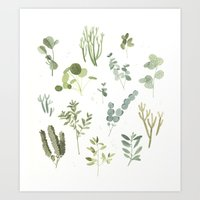 plants Art Prints featuring Plants  by Maggie Chiang