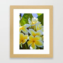 Tropical Garden2 Framed Art Print