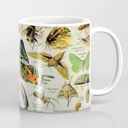 Arthropod Vintage Scientific Illustration French Language Encyclopedia Lithographs Educational Coffee Mug