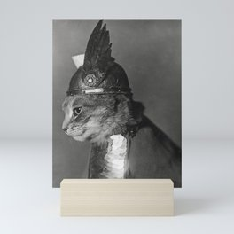 Funny Cat Vintage Photograph, 1930s Mini Art Print