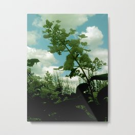 unknown Metal Print