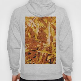 Yellow Garden Flowers Hoody