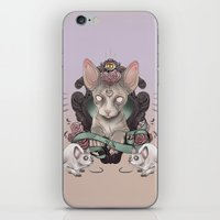 sphynx iPhone & iPod Skins featuring Sphynx by AlchemyArt