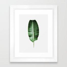 Plant, Leaf, Banan leaf, Nature, Modern art, Art, Minimal, Wall art Framed Art Print