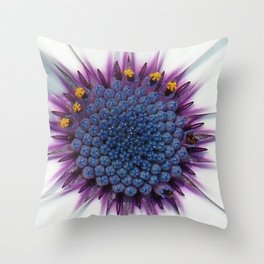Stunning African Daisy Tropical Flower Macro Throw Pillow