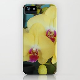Tropical freshness iPhone Case