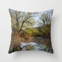 Botanical Reflection Landscape Throw Pillow