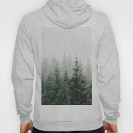 MOUNTAIN FOREST Hoody