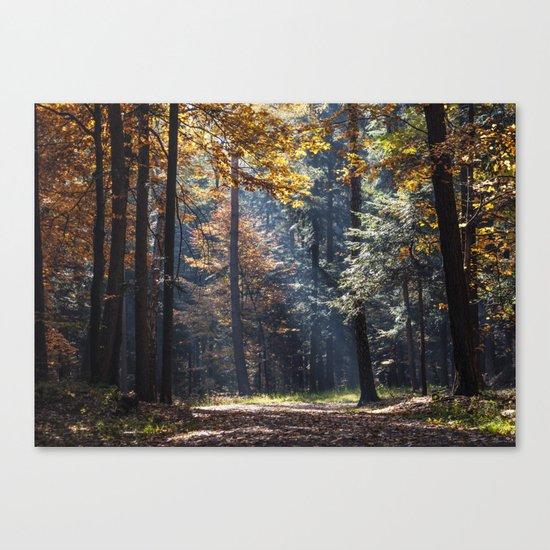 Colorful autumn Canvas Print