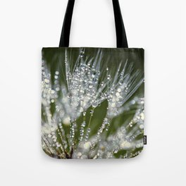 holding jewels Tote Bag