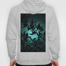 Dreaming of Teal You Hoody