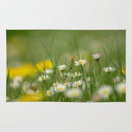Daisy meadow Rug