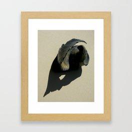 Sea Rose Framed Art Print