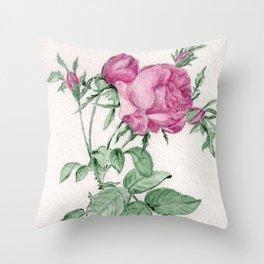 Rosa Centifolia Foliacea Throw Pillow