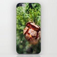 An Inner Fire iPhone & iPod Skin