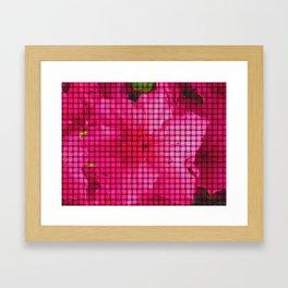 flowing flower pink Framed Art Print