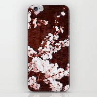 cherry blossoms iPhone & iPod Skins featuring Cherry Blossoms by Paula Belle Flores
