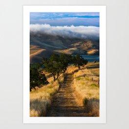 Vista Grande Art Print