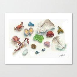 Denman Island Treasures Canvas Print