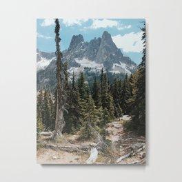 Washington Pass, North Cascades National Park, Washington Metal Print