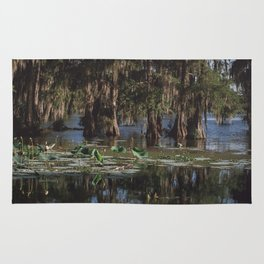 Beautiful Swamp and Cypress Rug