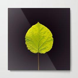 Green Leaf On A Black Background #society6 #decor #buyart Metal Print