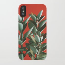Copper Spoons - Kalanchoe orgyalis iPhone Case