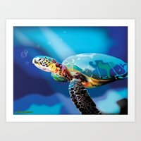 sea turtle Art Prints featuring Sea Turtle by Natasha Alexandra Englehardt