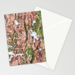 Woodland Winter - Nature Photography Stationery Cards