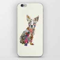 mod iPhone & iPod Skins featuring the mod chihuahua by bri.buckley