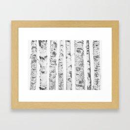 Birch Trees | Forest Landscape Photography Minimalism Framed Art Print
