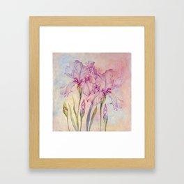 Angel Iris - Pure of Heart Framed Art Print