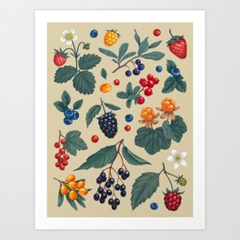 Forest Berries Art Print