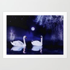 Swan lake at midnight Art Print