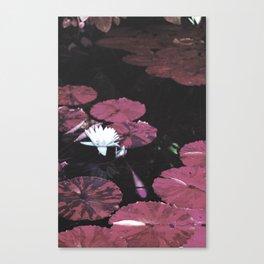 Red Pond Canvas Print