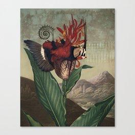 Cor 2 Canvas Print