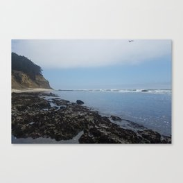 Moss Beach Canvas Print