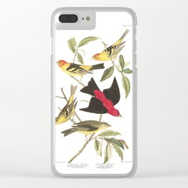 Louisiana Taneger and Scarlet Taneger - Vintage Illustration Clear iPhone Case