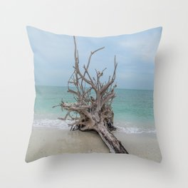 Remember Your Roots Throw Pillow