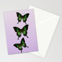 Papilio arcturus Stationery Cards
