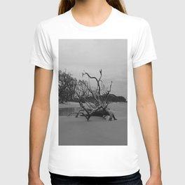 Ghost Trees - Driftwood Beach T-shirt