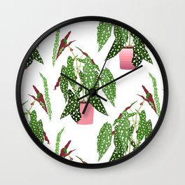 Simple Potted Polka Dot Begonia Plants in White Wall Clock