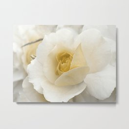 Spring Time with Yellow Rose Metal Print