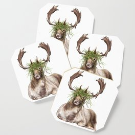 Derp Deer Coaster