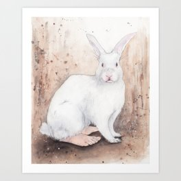What If...?? Rabbits Had Feet. Art Print