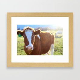 CoW #1 Framed Art Print