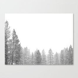 Winterland // Snowy Landscape Photography White Out Winter Pine Tree Artwork Canvas Print