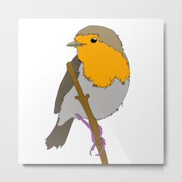 Cartoon Robin Metal Print