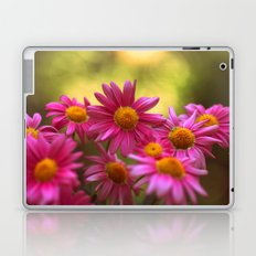 Anthemis 2632 Laptop & iPad Skin